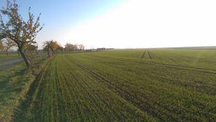 Obrázek pro kategorii Listová hnojiva a ostatní